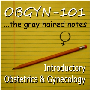 OBGYN-101 Gray Haired Notes